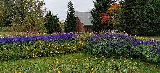 Country garden area