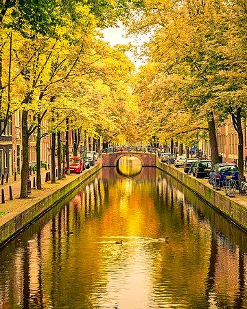 Амстердам, Нидерланды: Stay gold, Amsterdam.