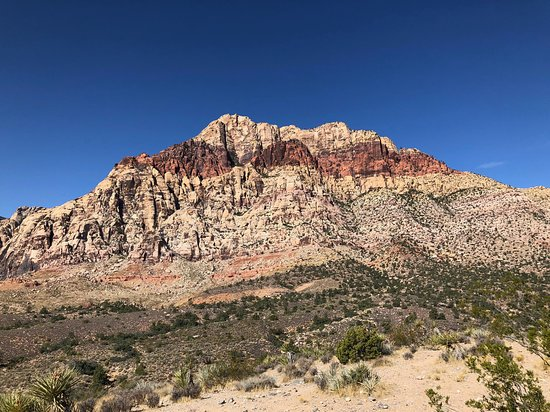 Red Rock Canyon & Death Valley Photo Tour from Las Vegas 사진