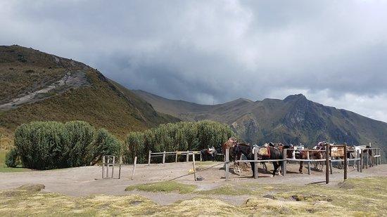 Beginning of Pichincha Trail