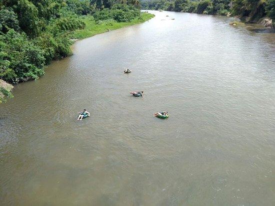 disfruta del rio palomino