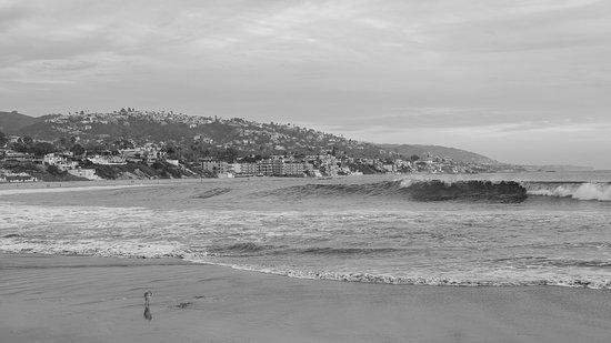 fun black and white of the coast