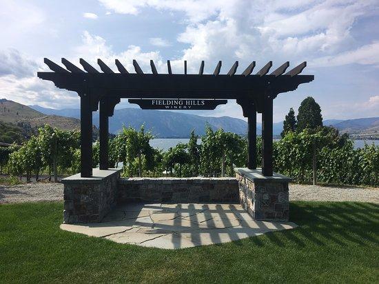 Fielding Hills wine tasting experience.