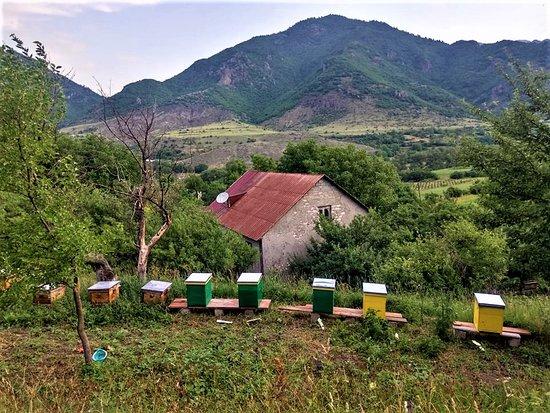 Borjomi-Kharagauli National Park, Γεωργία: Barbale Organic Farm
