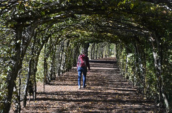 Walking thorough the gardens