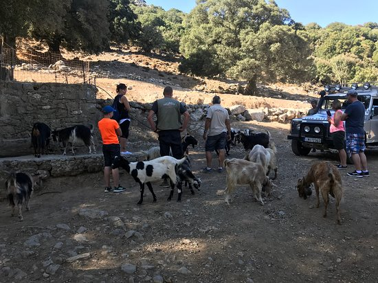 Full-Day Land Rover Safari from Heraklion with Lunch – fénykép