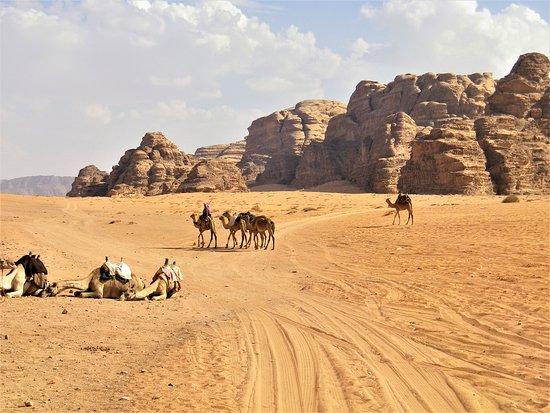 """Вади-Рам, Иордания: Wadi Rum, in Giordania: """"Spesso il deserto è l'idea che ce ne facciamo. Lo sogniamo, lo pensiamo, lo desideriamo, lo abbelliamo e un giorno finalmente lo scopriamo e non sappiamo più cosa pensare né dire. Ci intimidisce, obbligandoci al silenzio, a una grande umiltà"""". (Tahar Ben Jelloun)"""