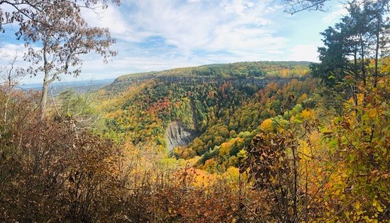 Voorheesville, NY: Taken from the Horseshoe Trail on 10/12/19.