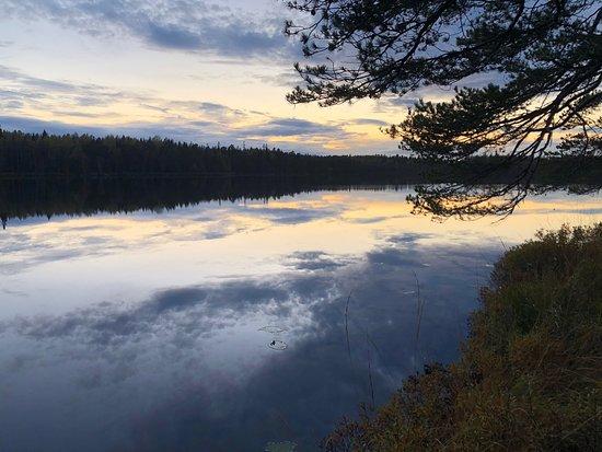 Oesterbybruk, Suecia: Trevligt naturreservat med skog, myrar och sjöar samt flera fina öppna stugor för övernattning.