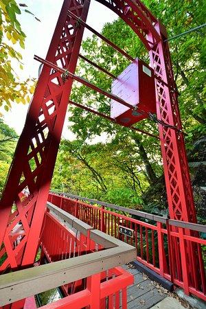 吊り橋の様子
