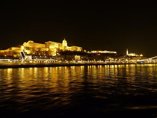 Danubio de noche
