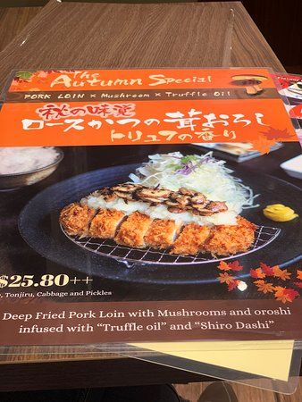 Premium Tonkatsu Set Specialty at T1 Jewel, Changi Airport