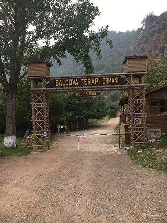Balçova terapi ormanı güzergahı