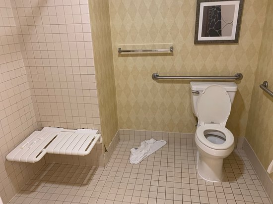 The Accessible toilet had grab bars for the commode and the shower was roll in with a nice seat