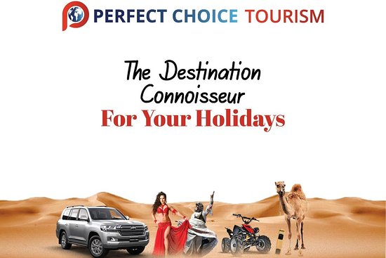 PERFECT CHOICE TOURISM LLC