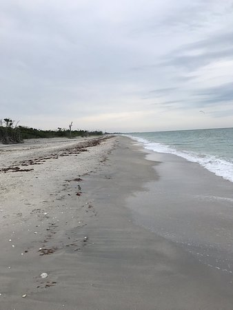 Englewood Beach - 2019 All You Need to Know BEFORE You Go ...