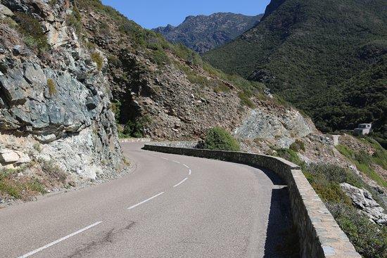 la départementale D80