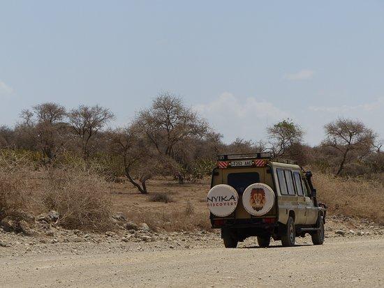 4 Nights 5 Days Camping Safari Itinerary: Nyika Discovery