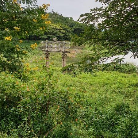 Rambukwella, Шри-Ланка: View