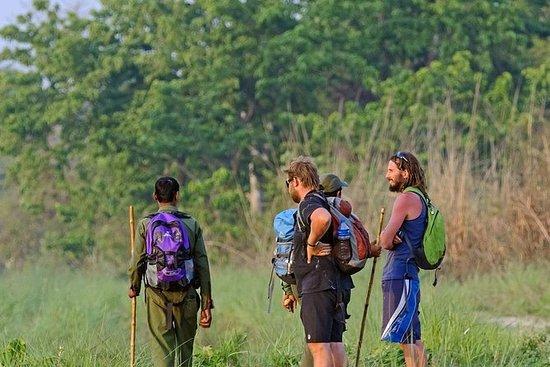 3-Day All Inclusive Chitwan Safari ...