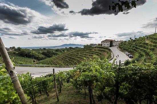 Unesco Prosecco Hills: privé dagtocht ...