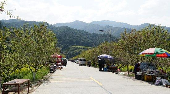 Lechang, China: 花海