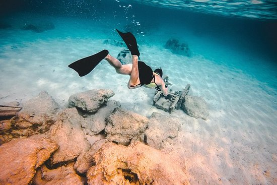 Snorkelling Experience by Boat