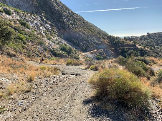 E-Mountain Bike & Wine Tour from Marbella to Sierra Blanca: Sierra Blanca