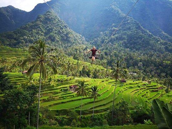 Dungky Bali Driver