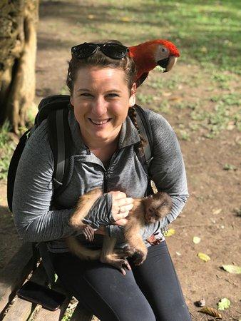 Tamshiyacu, Peru: Visiting local wildlife