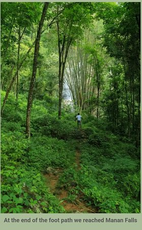 Manan Falls / මනo ඇල්ල (6.788287, 80.269008)  Directions: Colombo->Eheliyagoda ->Baduwatta Junction-> Kurugammodara Road-> Pahalagama Estate road (5km along Kurugammodara Road) -> Manan Falls  The board of Pahalagama Estate is seen in left hand side and road is situated in right hand side (next to Kaju kade) when you travel from Eheliyagoda side. This road ends at a Cinnamon estate. We parked our vehicle at the beginning of the road. We entered the estate through the gate. After 50m walk there w