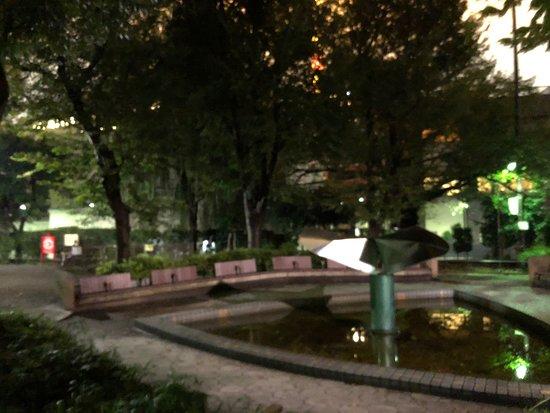 Mamiana Park