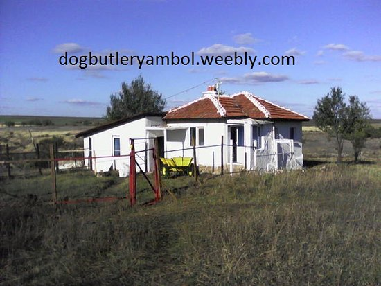 Yambol Province, บัลแกเรีย: If you need to leave your pet in good hands try the dog butler in nedyalsko yambol Bulgaria