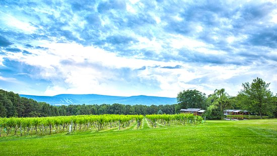 ‪Mount Nittany Vineyard & Winery‬