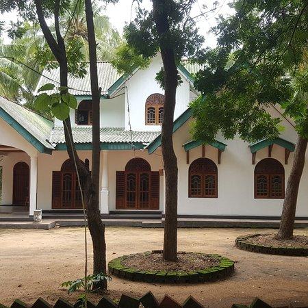 Bendiwewa, Sri Lanka: Tedora..🌺🌺🌺🌺