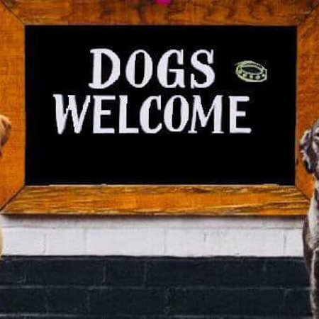 Dogs are always welcome 🙏
