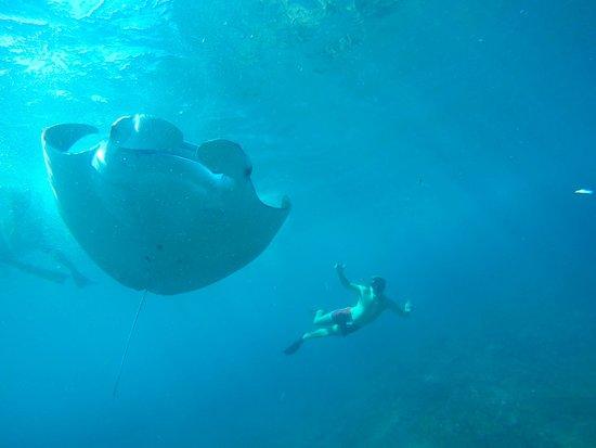 Penida Snorkeling Tour
