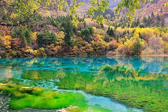 Chengdu Jiuzhai valley AND Yellow...