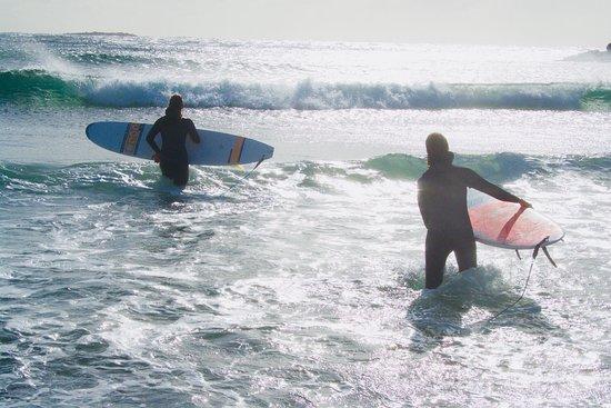 Surf-Lista