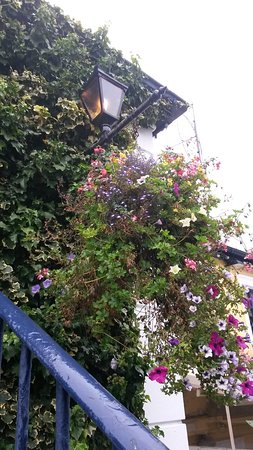 Stairs to Howth Railway Station. White wall behind the flowers is the Bloody Stream pub