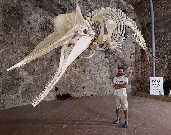MuMa - Museo del Mare di Milazzo