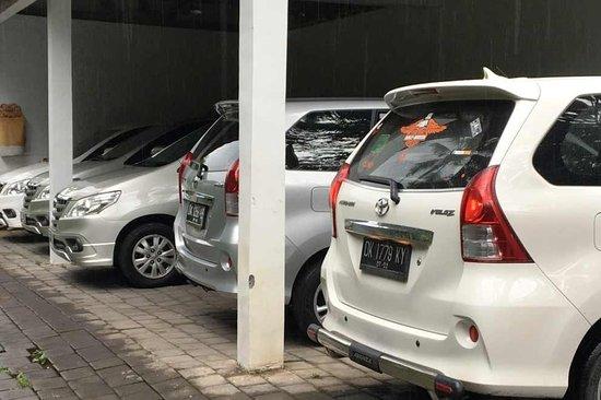 Bali Private Driver Diva