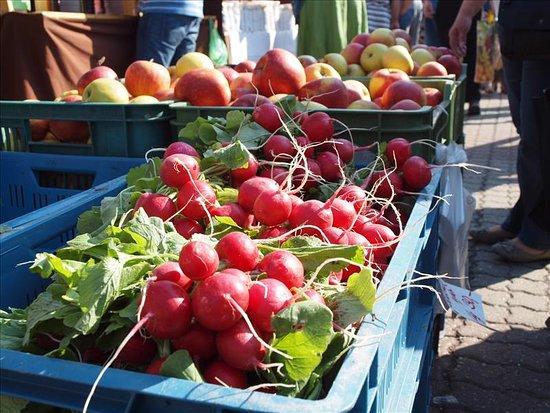 Farmer's market Kuban