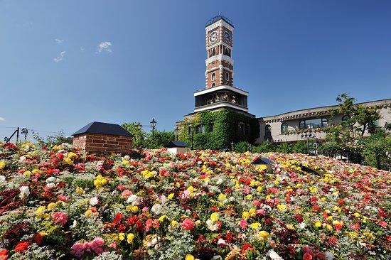 Shiroi Koibito Park