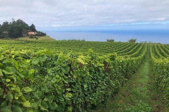 Rum, Poncha & Madeira Wine Tour ...