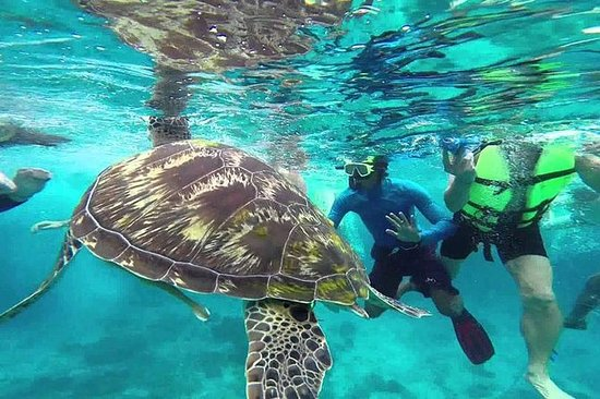 Surin Islands Snorkeling Trip from...