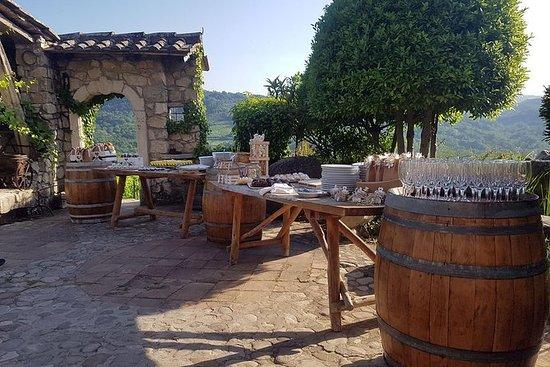 Irpinia Wine Tour y almuerzo
