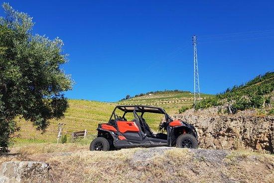 Tour 1 Dia ao Douro de Buggy