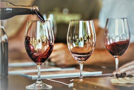 来自里斯本的阿泽伊图奥葡萄酒和美食体验特别私人半日游