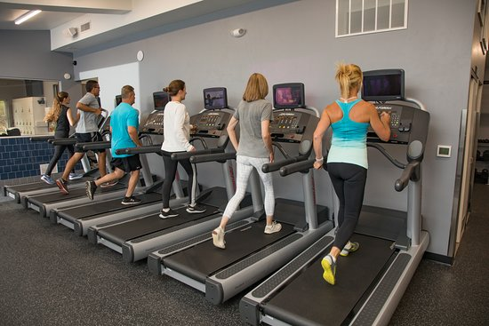 Sister Bay, WI: Our facility uses equipment by: LifeFitness, Cybex, Hammerstrength, and Synergy to name a few. Grab a treadmill, and get your sweat on!